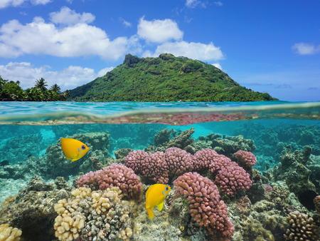 Split Bild über und unter der Wasseroberfläche, Landschaft von Huahine Insel mit Korallen und tropischen Fischen unter Wasser, Pazifik, Französisch-Polynesien Standard-Bild