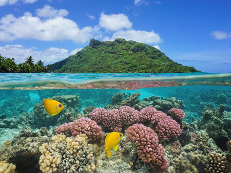 Split image above and below water surface, landscape of Huahine island with coral and tropical fish underwater, Pacific ocean, French Polynesia