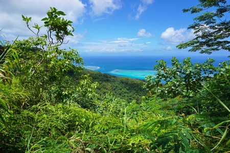 nui: Green vegetation with ocean view from the heights of Huahine Nui island, Pacific ocean, French Polynesia