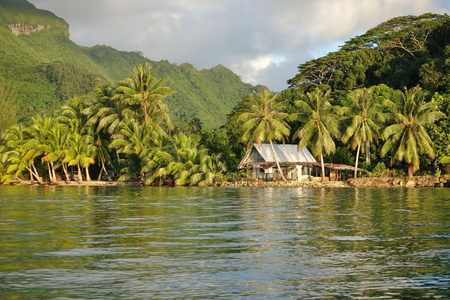 polynesia: Coastal landscape with a rustic house and coconut trees on the shore, Huahine island, Pacific ocean, French Polynesia Stock Photo