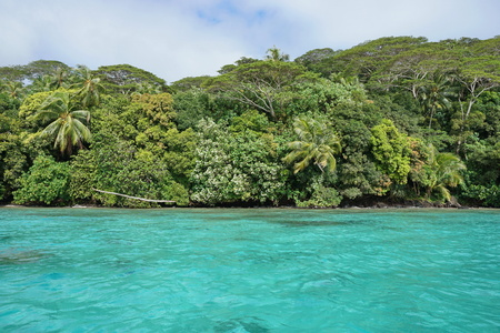 untouched: Coastal landscape with turquoise water and lush forest on untouched tropical shore, Huahine island, Pacific ocean, French Polynesia