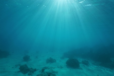 ocean water: Ocean floor with sunlight through water surface, natural scene underwater, Pacific ocean, French Polynesia Stock Photo