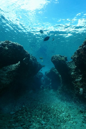 Small canyon underwater carved by swell into the reef, Huahine island, Pacific ocean, French Polynesia