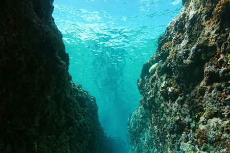 crevasse: Underwater crevasse in the outer reef, Pacific ocean, French Polynesia