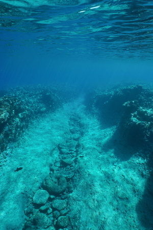 underwater ocean: Underwater path carved by the swell into the reef on the ocean floor, Pacific ocean, French Polynesia Stock Photo