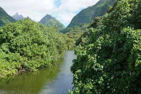 Tahiti iti landscape, the river and valley Vaitepiha with mountains in background, French Polynesia