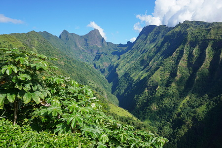Tahiti mountain landscape, the Tuauru valley in Mahina with the mount Orohena in background ( highest point of French Polynesia )