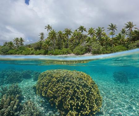 under fire: Split-disparó más bajo la superficie del agua cerca de la costa tropical con árboles de coco y el fuego bajo el agua de coral, isla de Huahine, Océano Pacífico Sur, Polinesia francesa