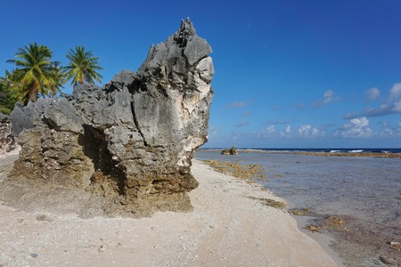 south pacific ocean: Eroded rock formation on tropical beach, atoll of Tikehau, Tuamotu archipelago, French Polynesia, south Pacific ocean Stock Photo