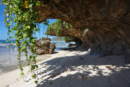 south pacific ocean: Small sandy beach with vines hang down from the rocks on the sea shore, Rurutu island, south Pacific ocean, Austral archipelago, French Polynesia Stock Photo
