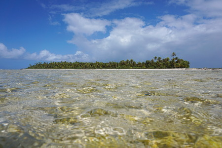 motu: Tropical islet of the atoll of Tikehau, seen from a shallow channel (hoa) between the ocean and the lagoon, Tuamotu archipelago, French Polynesia, Pacific ocean