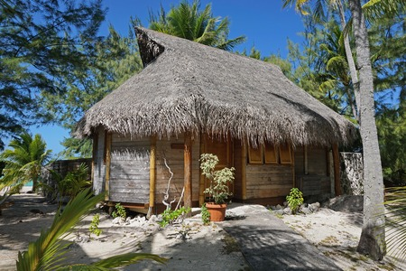 thatched roof: Wooden tropical bungalow with thatched roof on a motu of the atoll of Tikehau, Tuamotu, French Polynesia, south Pacific