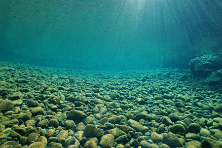 pebbles: Pebbles underwater on riverbed with clear freshwater and sunlight through water surface, natural scene, Dumbea river, New Caledonia, south Pacific