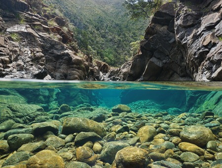 Rocks over and under the water split by waterline in a river with clear water, Dumbea river, New Caledonia Standard-Bild
