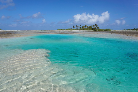 motu: Turquoise water of a shallow channel (hoa) between the ocean and the lagoon, atoll of Tikehau, Tuamotu archipelago, French Polynesia, Pacific ocean