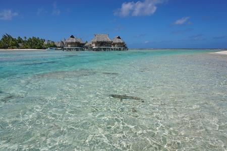atoll: Shallow water of a lagoon with tropical overwater bungalows, Tikehau atoll, Tuamotu archipelago, French Polynesia, Pacific ocean
