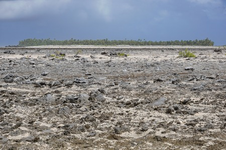 regularly: Rocky landscape on the rim of the atoll of Tikehau in a part regularly covered by the sea, Tuamotu archipelago, French Polynesia, Pacific ocean Stock Photo