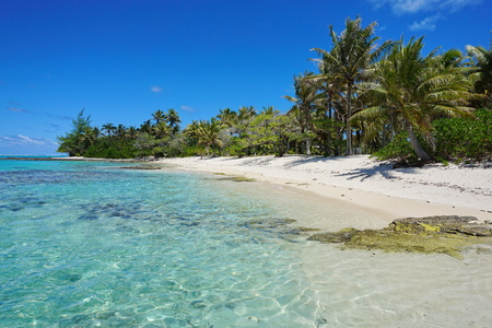 nature scenery: French Polynesia tropical beach shore with trees on the south of Huahine island, Pacific ocean