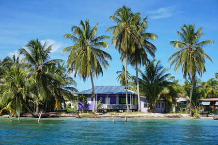 Rustic tropical home on the sea shore with coconut trees, Caribbean, Central America, Panama