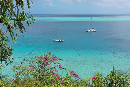 Sailboat anchored in blue water of a lagoon with tropical vegetation in foreground, south Pacific ocean, Huahine island, French Polynesia Stock Photo
