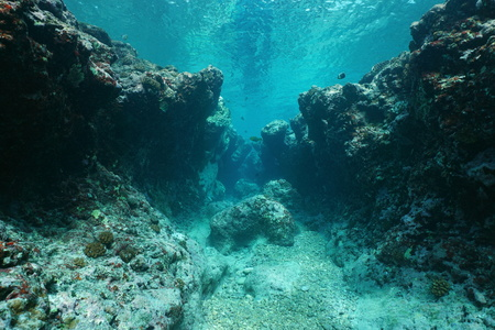 Rocky underwater seascape ocean floor outer reef carved by the waves, Pacific ocean ,Huahine, French Polynesia