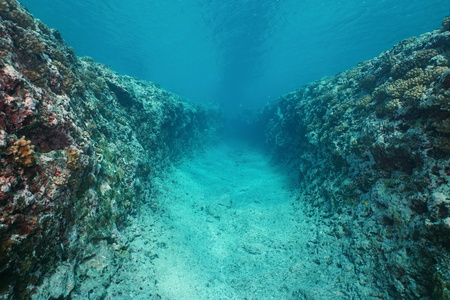 Natural trench underwater carved into the ocean floor on the outer reef of Huahine island, Pacific ocean, French Polynesia