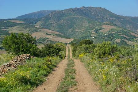 Landschap van de Pyreneeën Orientales, landelijke weg die leidt naar de bergen van Albera-massief in de buurt van Banyuls sur Mer, Roussillon, ten zuiden van Frankrijk