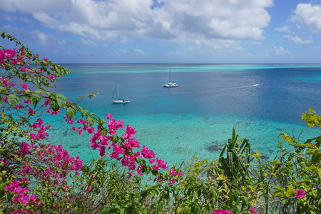 Seascape over tropical lagoon with two boats moored and bougainvillea flowers in foreground, Huahine island in French Polynesia, Pacific ocean, Oceania Stock Photo