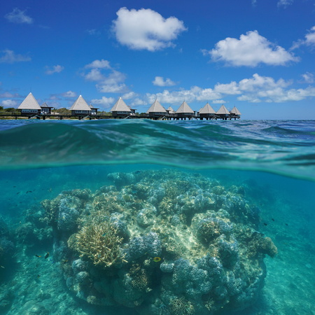 lobe: Over and under ocean, massive pinnacle of corals underwater and resort with overwater bungalows split by waterline, Maitre island, New Caledonia, south Pacific, Oceania