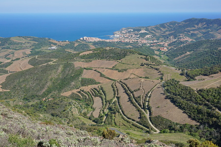 vermilion coast: Coastal landscape viewpoint from the heights of the Cote Vermeille near the town of Banyuls sur Mer, south of France, Mediterranean sea, Roussillon, Pyrenees Orientales