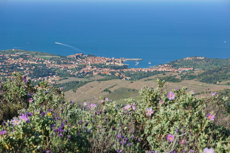 vermilion coast: Coastal village landscape Collioure on the shore of the Mediterranean sea, seen from the heights, Cote Vermeille, south of France, Roussillon, Pyrenees Orientales