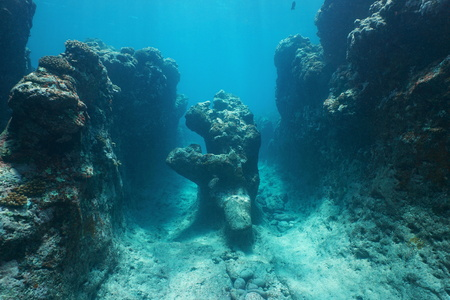 Natural rock formation underwater on the ocean floor carved by the waves in the outer reef of Huahine island, Pacific ocean, French Polynesia Banco de Imagens