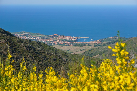 vermilion coast: Coastal village landscape Collioure on the shore of the Mediterranean sea, seen from the heights, Vermilion coast, south of France, Roussillon, Pyrenees-Orientales