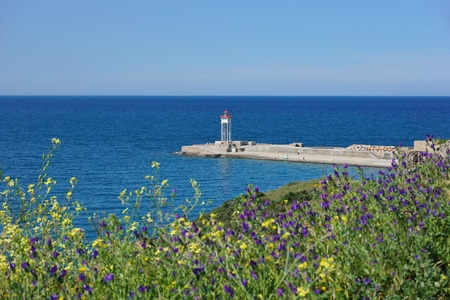 vermilion coast: Jetty with a lighthouse and flowers in foreground, Port-Vendres, Vermilion coast, Mediterranean sea, Roussillon, Pyrenees-Orientales, France