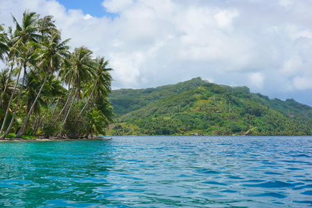French Polynesia Huahine island coastal landscape with coconut palm trees seen from the lagoon near Faie, south Pacific ocean, Oceania Stock Photo