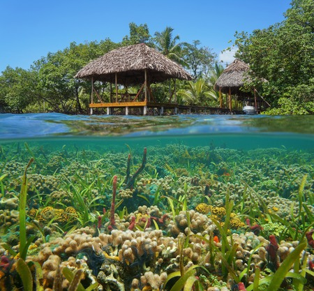 A thatched tropical hut over the water with a colorful coral reef underwater, Caribbean sea