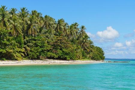 Tropical island sea shore with lush vegetation, Bastimentos national marine park, Bocas del Toro, Panama, Central America Stock Photo