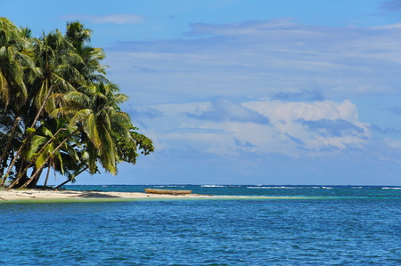 Tropical island with leaning coconut palm trees and a wooden dugout canoe on the beach, Caribbean sea, Bocas del Toro, Panama, Central America