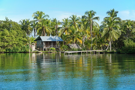Rustic Amerindian hut with dock on tropical shore with coconut trees, Bocas del Toro, Panama, Caribbean, Central America