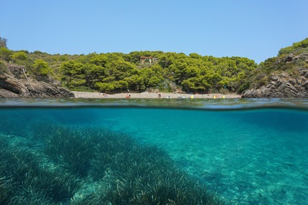 Mediterranean sea peaceful cove with seagrass underwater, split view above and below water surface, Spain, Costa Brava, Cala Guillola, Cadaques, Cap de Creus, Catalonia