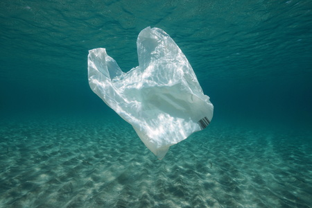 Rifiuti di plastica sott'acqua, un sacchetto di plastica nel Mar Mediterraneo tra la superficie dell'acqua e un fondale sabbioso, Almeria, Andalusia, Spagna