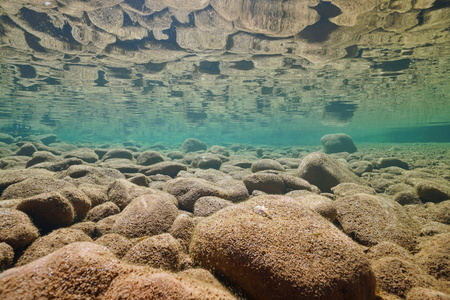 Underwater rocky riverbed in shallow water reflected in the calm water surface, La Muga river, Alt Emporda, Catalonia, Spain