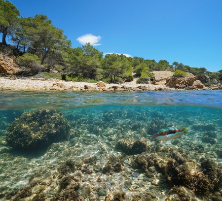 Rocky cove with fish underwater near the sea shore, split view half above and below water surface, Mediterranean sea, Catalonia, L'Ametlla de Mar, Tarragona, Costa Dorada, Spain