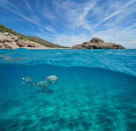 Beach and rock with fish and sand underwater, Mediterranean sea, split view half above and below water surface, Spain, Costa Dorada, Platja Del Torn, lHospitalet de lInfant, Tarragona, Catalonia