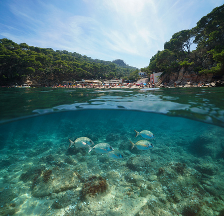 Spain Costa Brava beach with fish underwater, split view half above and below water surface, Aiguablava, Begur, Catalonia, Mediterranean sea