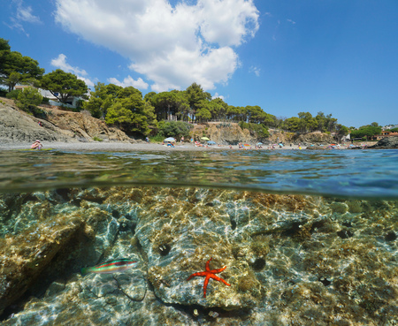Spain beach in summer with a starfish underwater, Llanca on the Costa Brava, Platja La Farella, split view half over and under water, Mediterranean sea, Catalonia