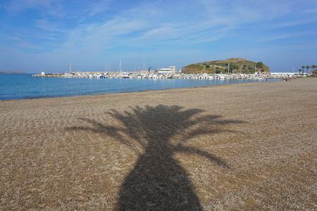 Shade of palm tree on the beach of Llanca harbor, Mediterranean sea, Costa Brava, Catalonia, Spain Banque d'images - 117727654