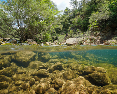 Wild river with rocks and fish underwater, split view half above and below water surface, La Muga, Girona, Alt Emporda, Catalonia, Spain Banque d'images - 117727657