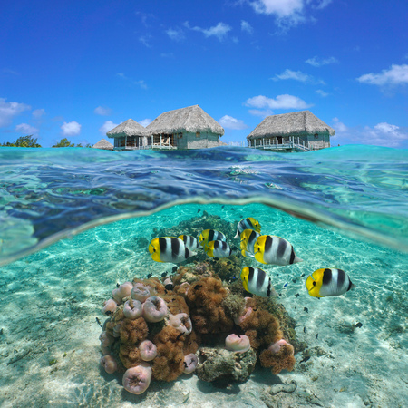 Thatched bungalows over water with colorful tropical fish and sea anemones underwater, split view half above and below water surface, French Polynesia, south Pacific ocean Stock Photo