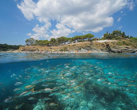 Spain beach coastline with a school of fish underwater, Llanca on the Costa Brava, split view half over and under water, Mediterranean sea, Catalonia Banque d'images - 117727719